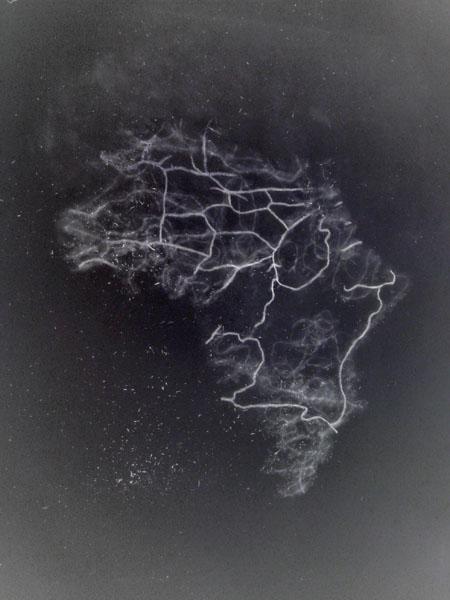 Borders, Simona Koch. Link