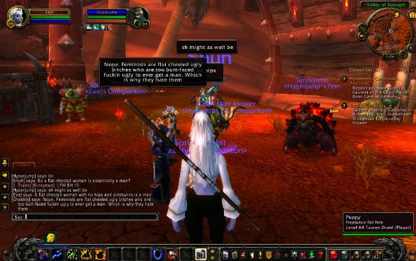 "Angela Washko, ""The Council on Gender Sensitivity and Behavioral Awareness in World of Warcraft"", 2012, Screenshot"